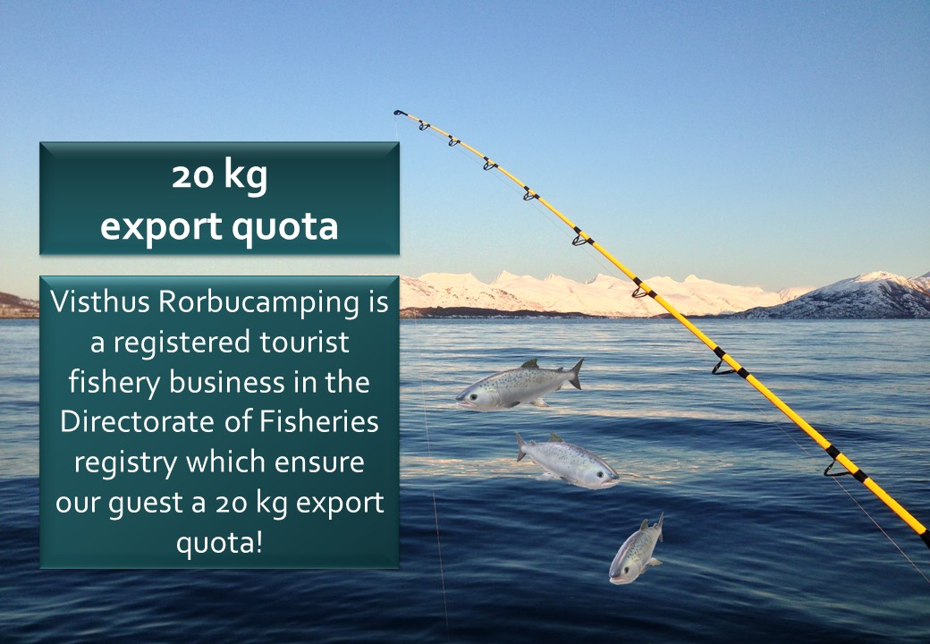 20 Kg Export Quota